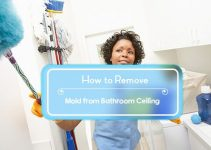 how to get mold off bathroom ceiling
