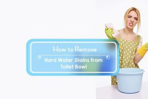 how to remove hard water stains from toilet bowl